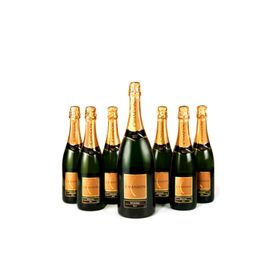 chandon_7garrafas_2