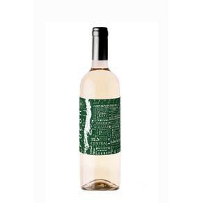 359454-Vinho-Pucon-Sauvignon-Blanc-750ml---1