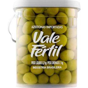 AZEITONA-VALE-FERTIL-VD-GORDAL-2KG