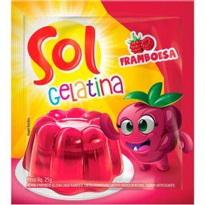 gelatina-sol-framboesa-25g