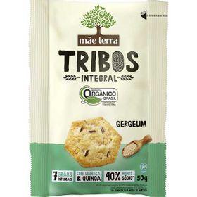 bisc-mae-terra-tribos-50g-or-int-gerg